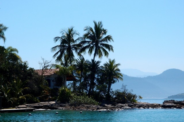 Palmen in der Bucht