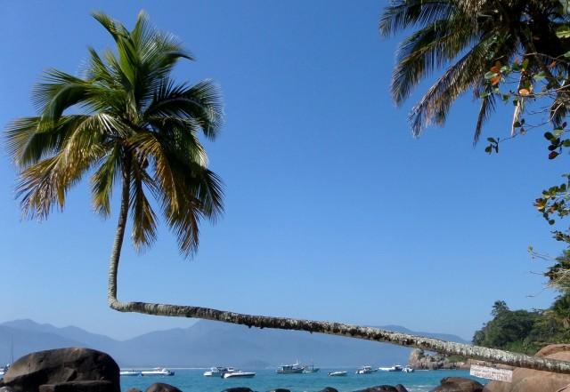Palme, Praia do Aventureiro
