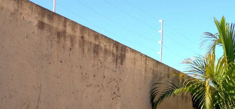 #11 – Ein Leben hinter Mauer und Elektrozaun