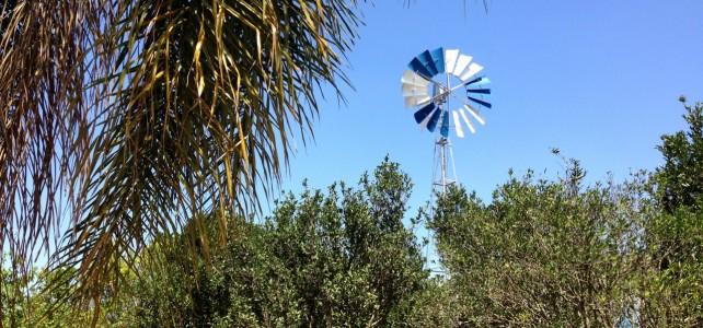#12 – Atibaia und das brasilianische Landleben