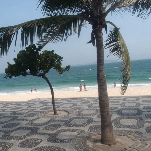 Palmen Ipanema Beach