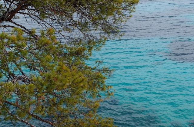 Buchten, Mallorca