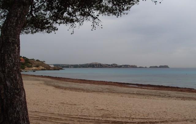 Strand, Paguera