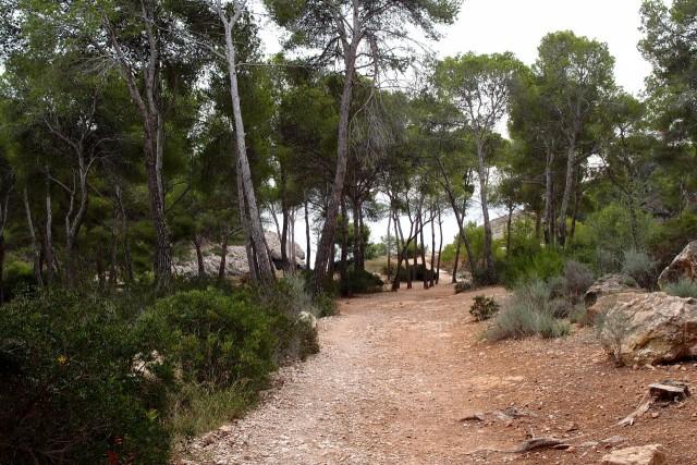 Carretera Cala Fornells, Mallorca