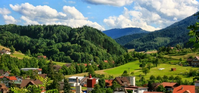 Erster Halt: Schwarzwald